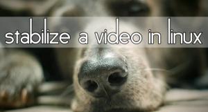 Estabilizar videos en Linux con Transcode y Vid-Stab